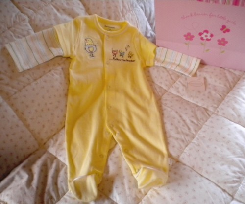 First Moments Infant Baby Layered Look Outfit w/Chicks 3-6MTH